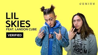 "Lil Skies ""Red Roses"" Feat. Landon Cube Official Lyrics & Meaning 