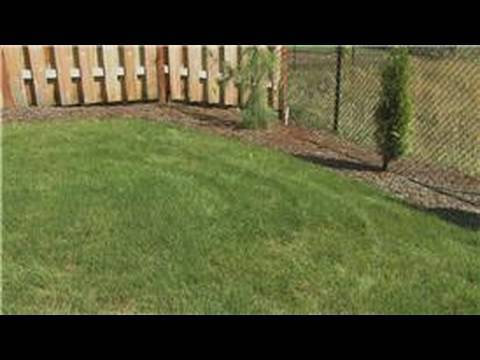 Lawn Care : How Soon Can You Fertilize New Grass?