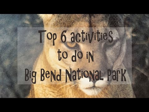 Top 6 Activities | Big Bend National Park