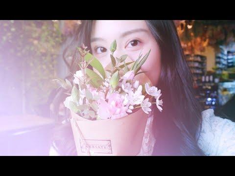 Nancy's Korea/Japan Trip 2018