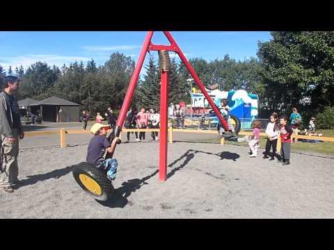 Fun two-person swing in the Reykjavik Zoo