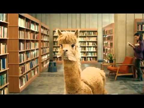 Alpaca by McVitie's