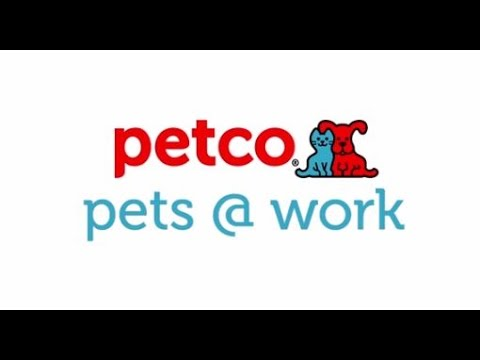 Pets @ Work (Petco)