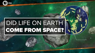 Did Life on Earth Come from Space?   Space Time
