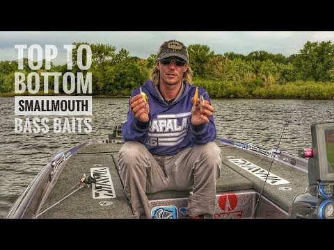Top to Bottom Smallmouth Bass Baits