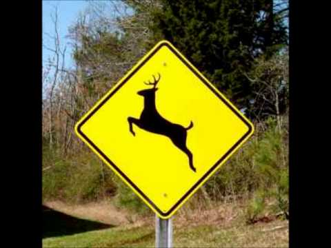 ORIGINAL - Please Move The Deer Crossing Sign.