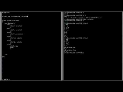 BASH Shell Scripting Tutorial in Linux #008 -