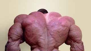 Bodybuilding Motivation - EPIC BACK DAY (2017)