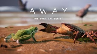 AWAY: The Survival Series | Gameplay Sneak Peek