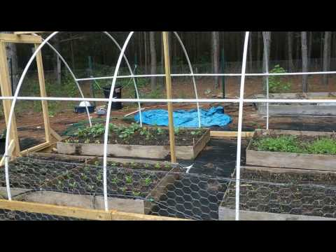 DIY PVC Greenhouse/Poly Tunnel Greenhouse Project (first try)