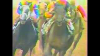 1988 Preakness Stakes - Risen Star