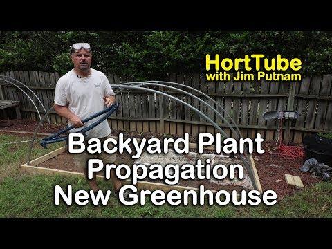 Backyard Plant Propagation - Starting A New Greenhouse