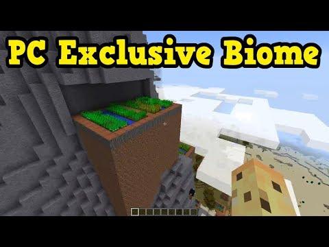 Minecraft PC's EXCLUSIVE Biome Is Also it's WILDEST