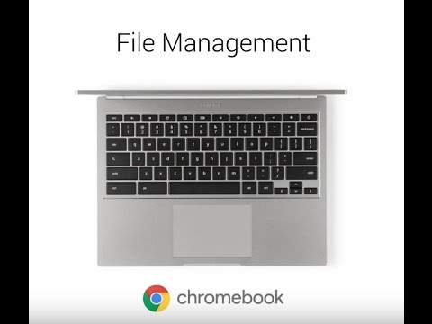 Video Tutorial: Managing Files on Chromebook