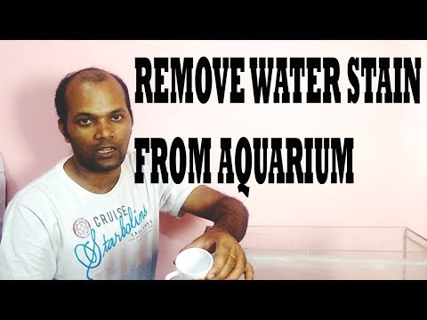 HOW TO REMOVE WATER STAIN  FROM AQUARIUM HINDI
