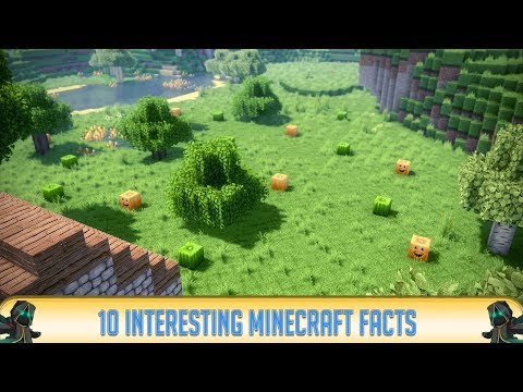 Minecraft: 10 Interesting Minecraft Facts! | 2018 | Minecraft 1.12.2