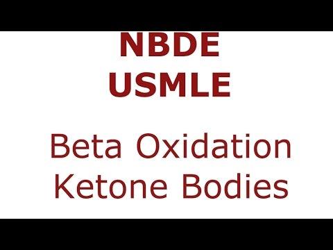 Beta Oxidation and Ketone Bodies - NBDE Biochemistry