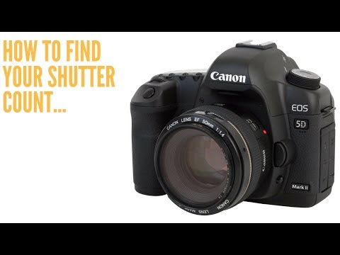 How To Find SHUTTER COUNT on CANON for Mac users...