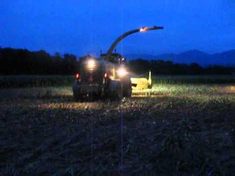 Chopping corn II.wmv