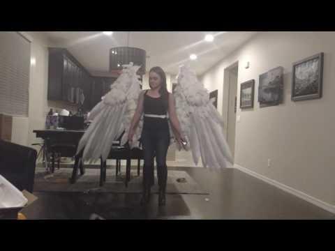 Wings demo