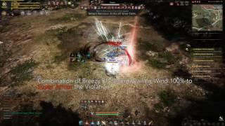 Black Desert Warrior vs Ranger Gear Carried 4K - PakVim net