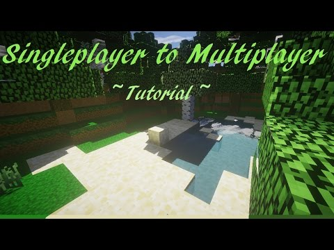 Singleplayer to Multiplayer Server Tutorial (Minecraft)