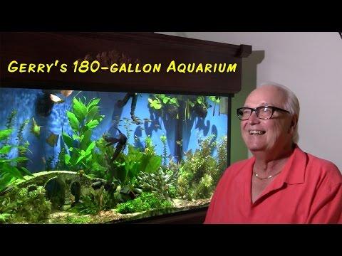 Gerald's 180-gallon Planted Aquarium