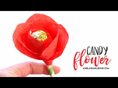 how to make a candy flower bouquet
