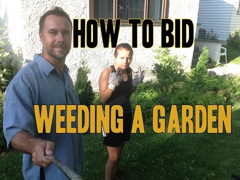 How to do Garden Landscaping