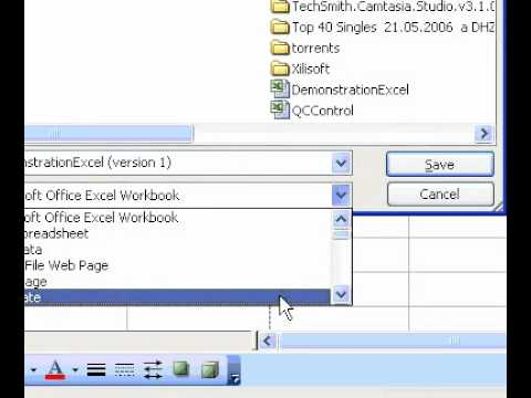 Microsoft Office Excel 2003 Create a workbook template