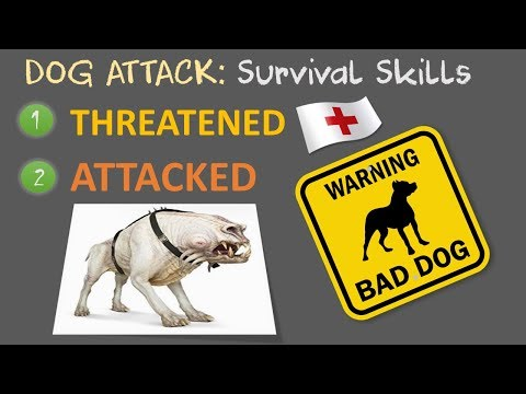 Dog Attack Survival Skills | When Threatened or Attacked
