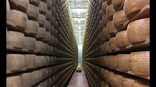 How Italian Cheese Is Made?🧀🇮🇹 Inside A Cheese Factory