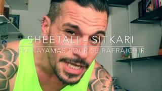 """Résultat de recherche d'images pour """"sitkari"""""""