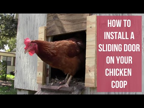 How To Install a Sliding Door on Your Chicken Coop