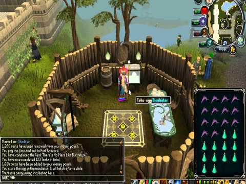 How to get a Penguin pet on Runescape