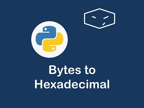 bytes to hexadecimal in python