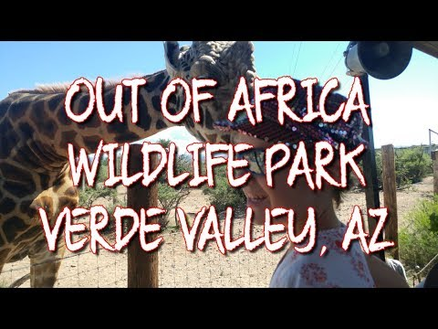 AWESOME Out of Africa Wildlife Park - Verde Valley, Arizona - Dorky Thrifters - Fulltime Family