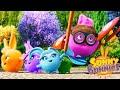 Мультфильмы для детей | СОЛНЕЧНЫЕ СОБЫТИЯ | ВЗЯТЬ | WildBrai