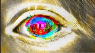 A Virtual Consciousness within a Virtual World