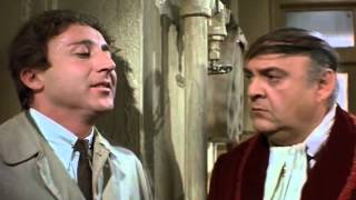 The Producers (1968) Fan Trailer