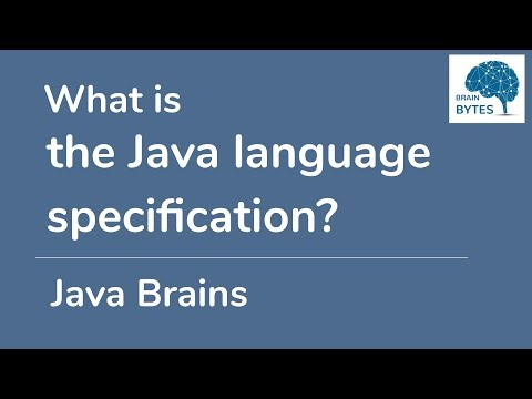 What is the Java Language Specification?