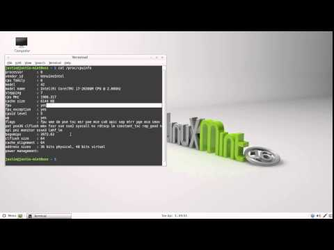 Detect your CPU model in Linux Mint 16