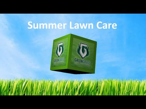 Summer Lawn Care Program