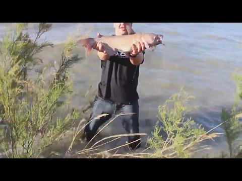 Fishing Utah Lake For HUGE Catfish!