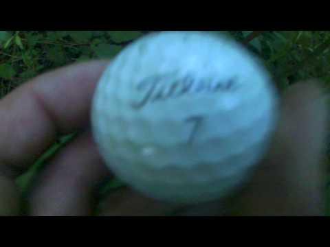The Golf Ball Hunter