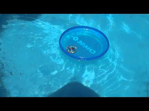 Experiment #2: Beyblade battle in a pool in a CHASE frisbee! Rock Leone vs Cyber Pegasus