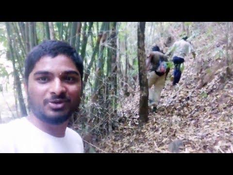 Koraput    Jeypore Forest