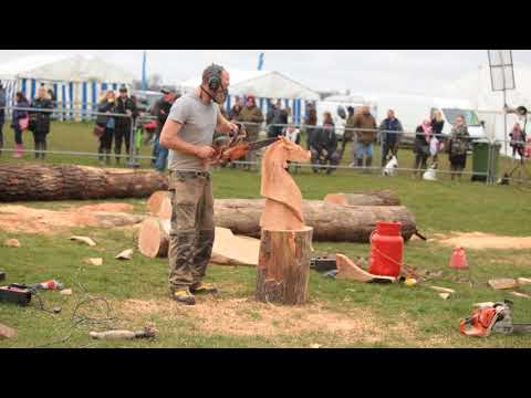 Chainsaw Carving at the Thame Country Show 2018 UK