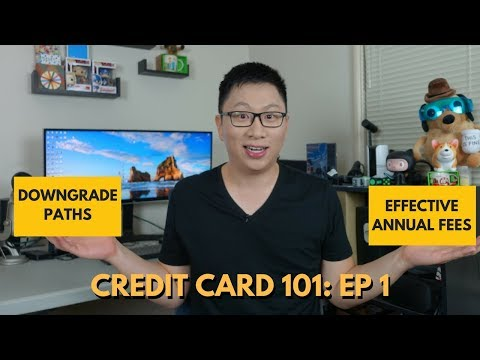 Credit Card 101: Downgrades + Effective Annual Fees
