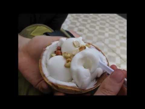 coconut milk ice cream by thefoodventure.com